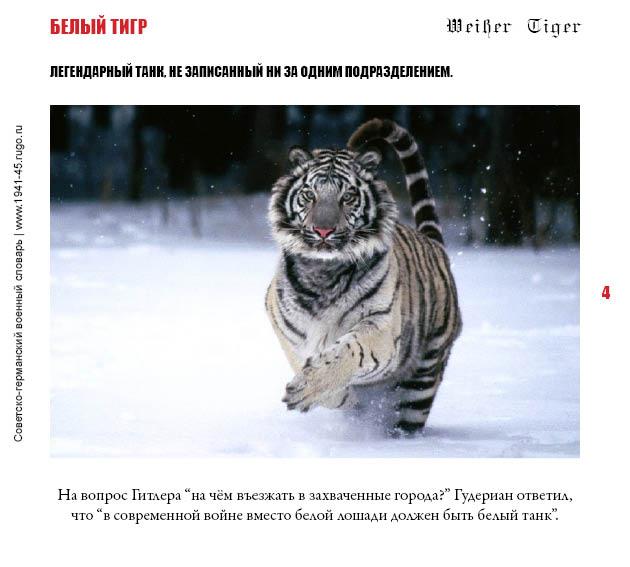 Белый тигр Андрея Степанова